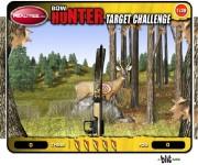 Bow Hunter Target Challeng gra online