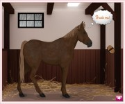 Dream Horse gra online