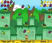 Jungle Master gra online