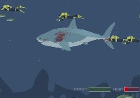 Mad Shark gra online
