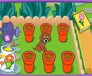 Magiczny ogród gra online