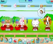 My Cute Pets 2 gra online