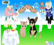 Pet Wedding Dress Up gra online