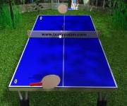 Ping Pong gra online
