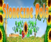 Słoneczne Pola gra online