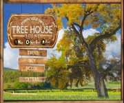 Tree House Building gra online