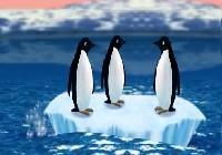 Turbo pingwiny gra online