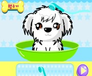 Umyj Pieska gra online