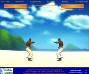 Capoeira Fighter gra online