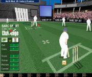 Cricket Challenge gra online